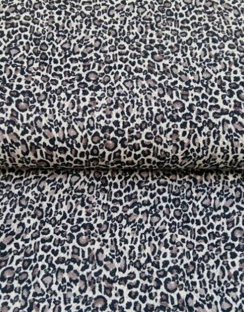 Leopard bruin