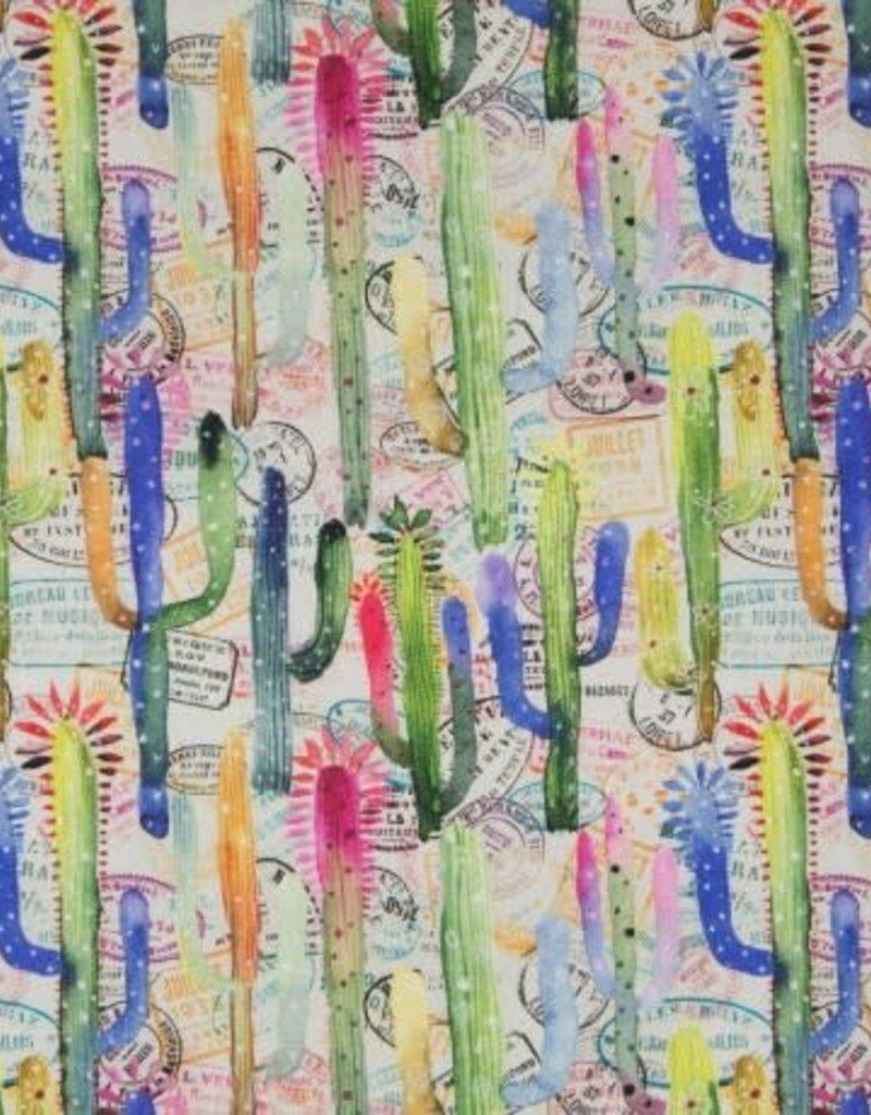 Veel kleurige cactus