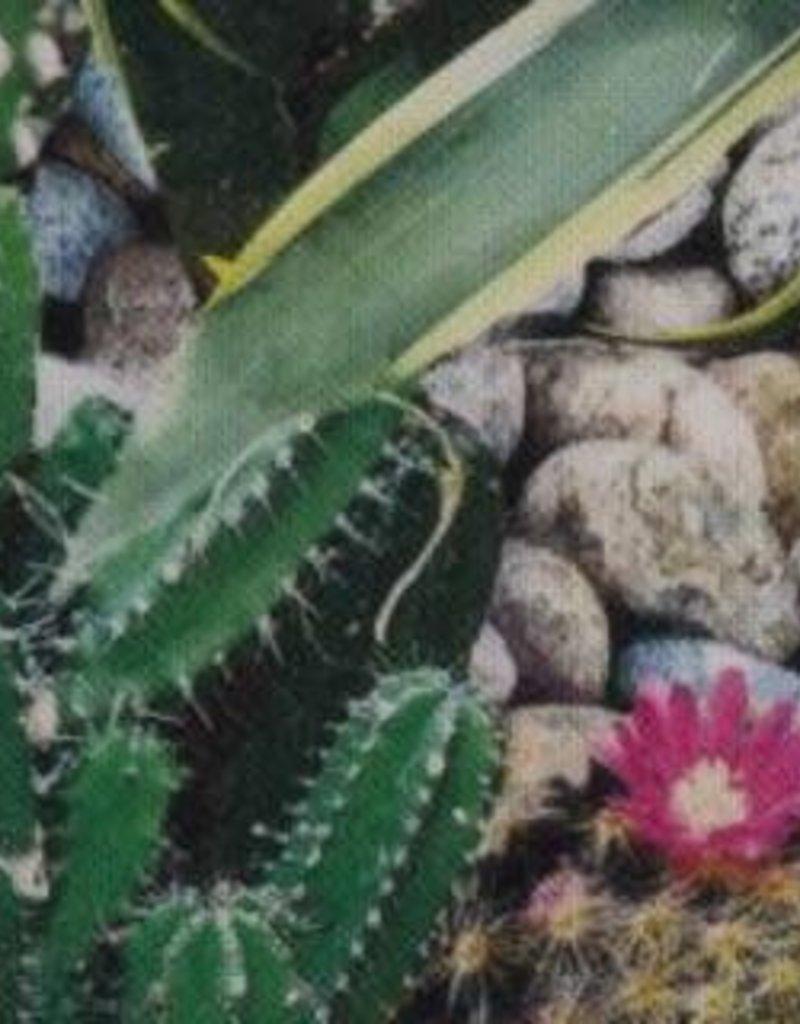 Cactus digitale print