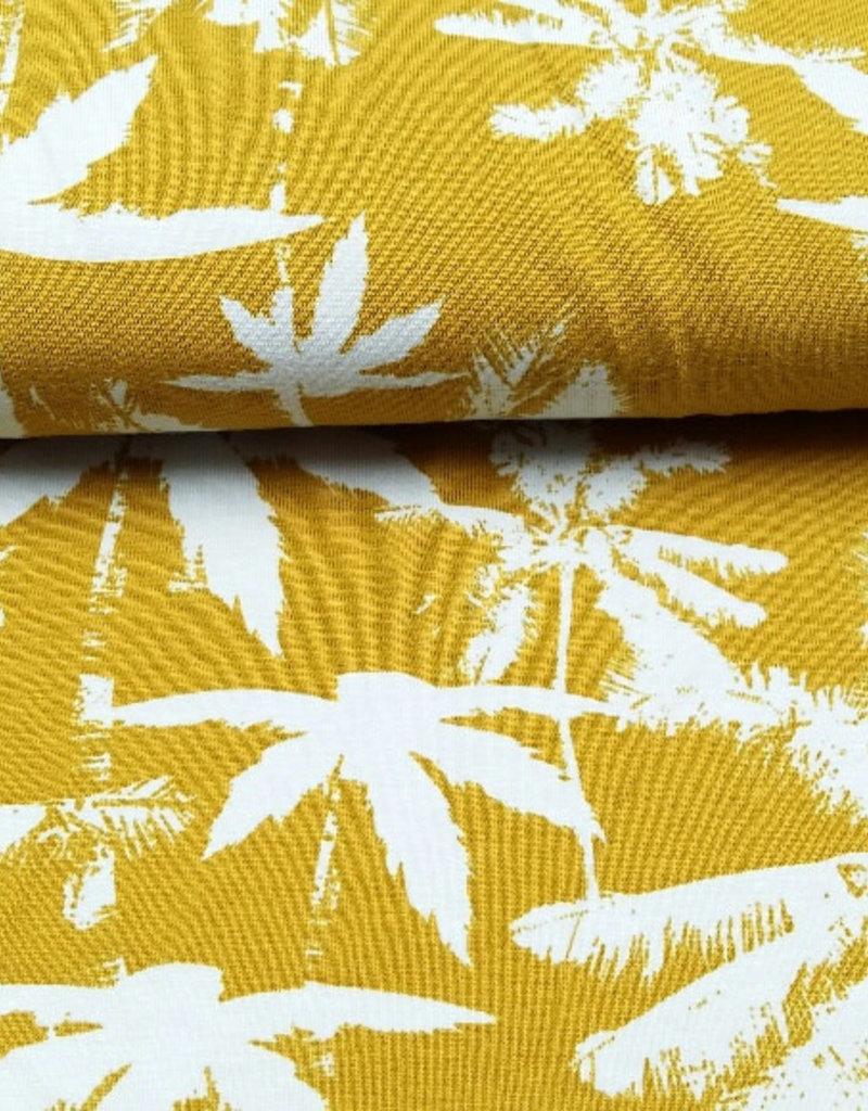 Palmboom Mies en Moos
