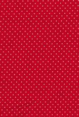 Judith mini dots rood