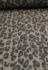 Leopard wol