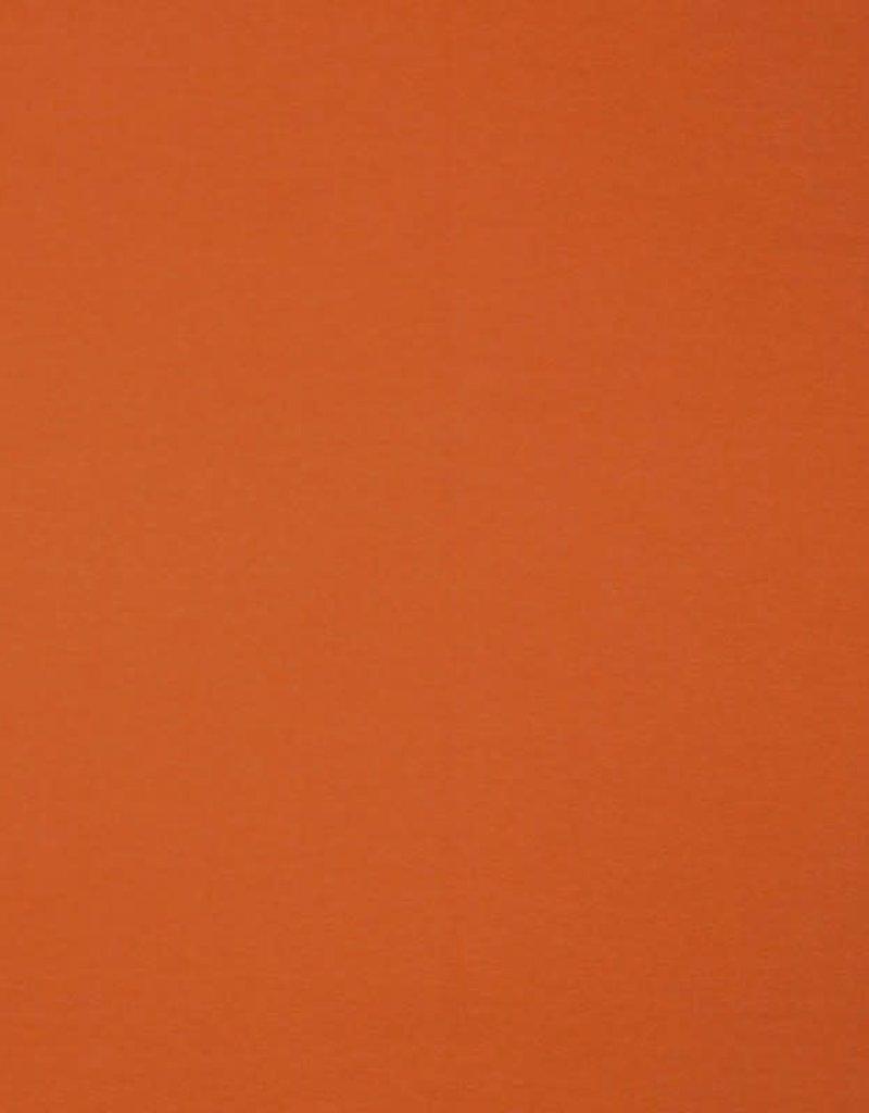 Punta di roma  oranje