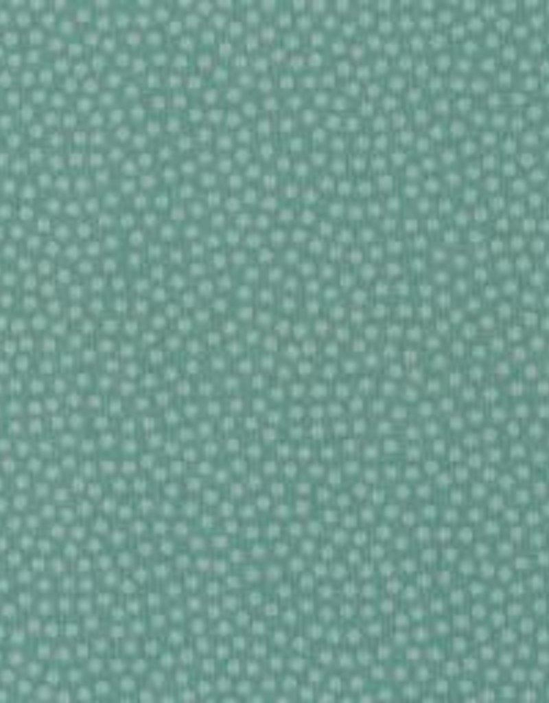 Dotty  mint groen