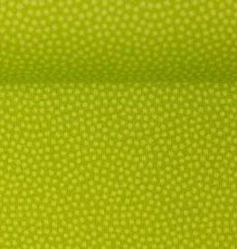 Dotty  kiwi groen