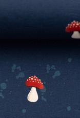 My little fox mushrooms