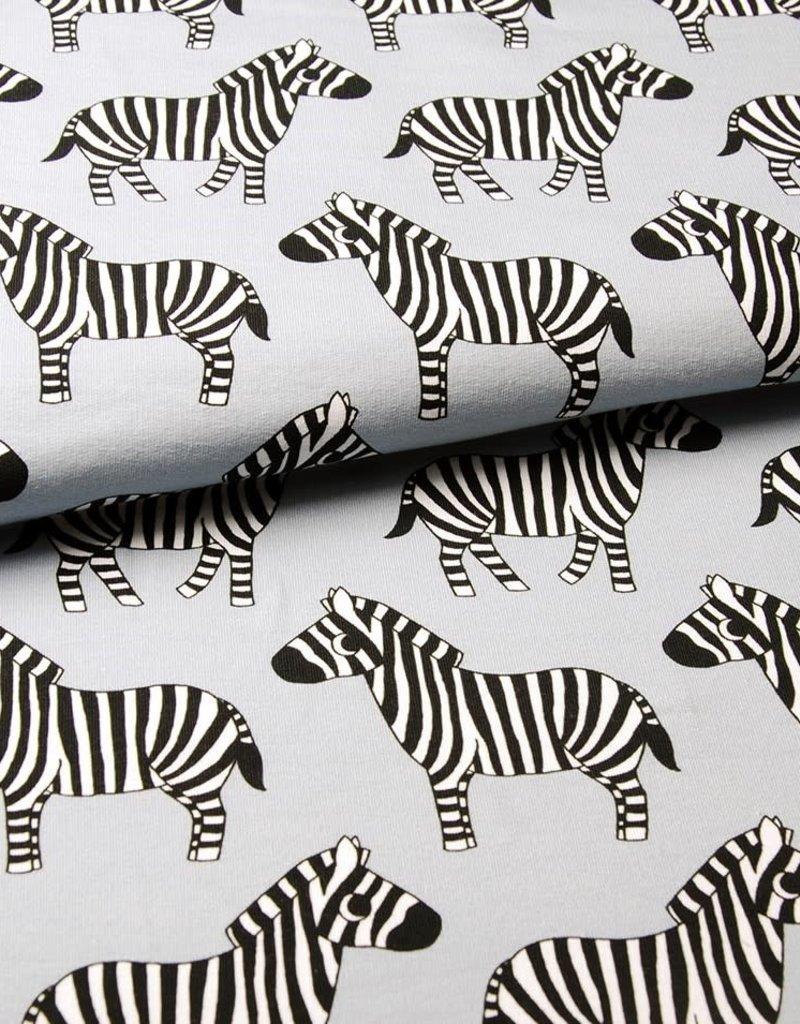 Eva Mouton Eva Mouton zebra