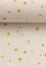 Merry christmas golden stars