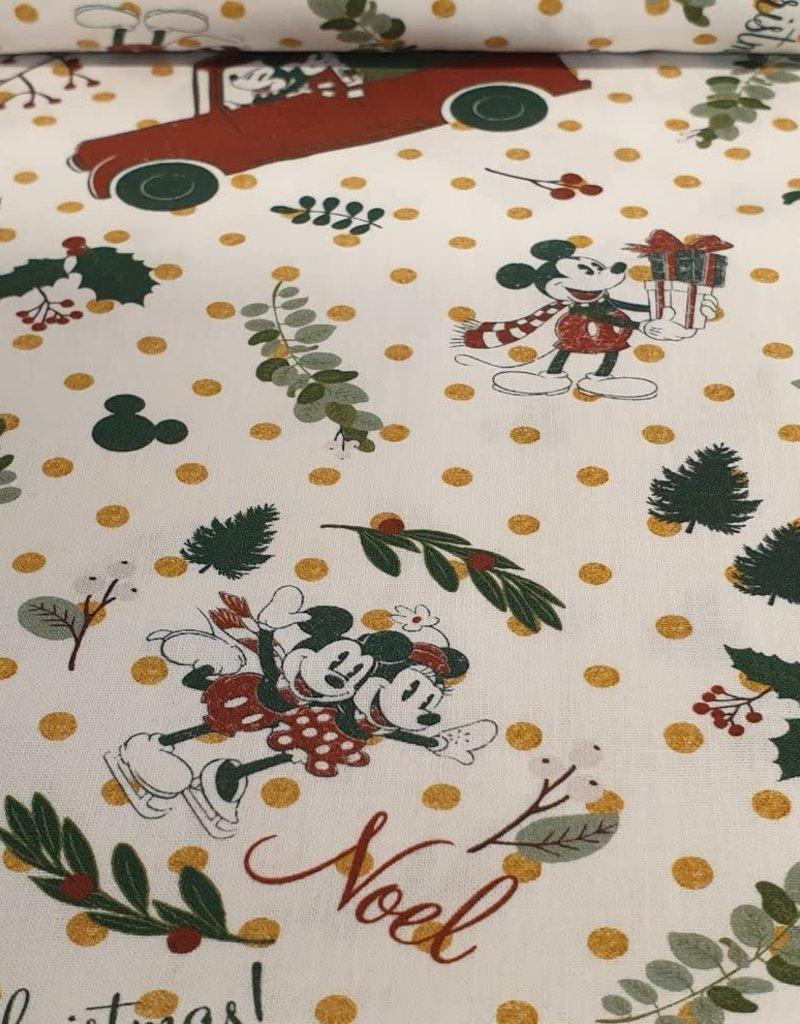 Mickey kerst