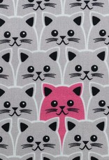 Little cats on gray