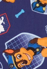 Disney Paw patrol Chase
