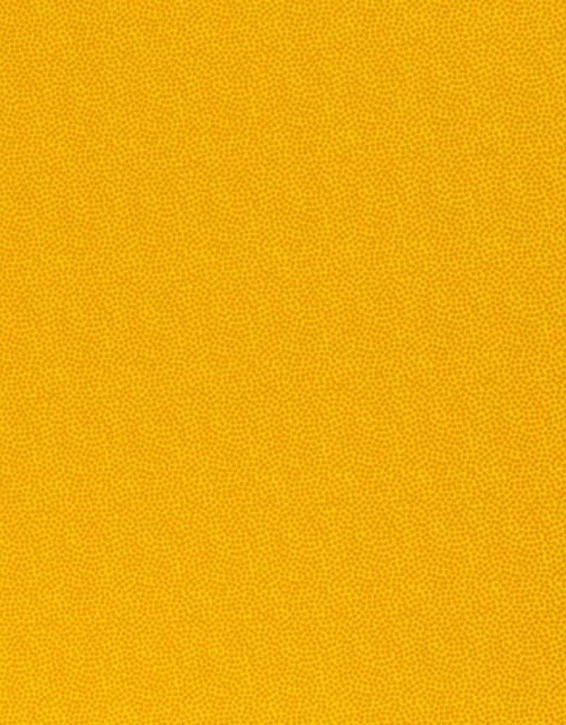 Dotty  geel