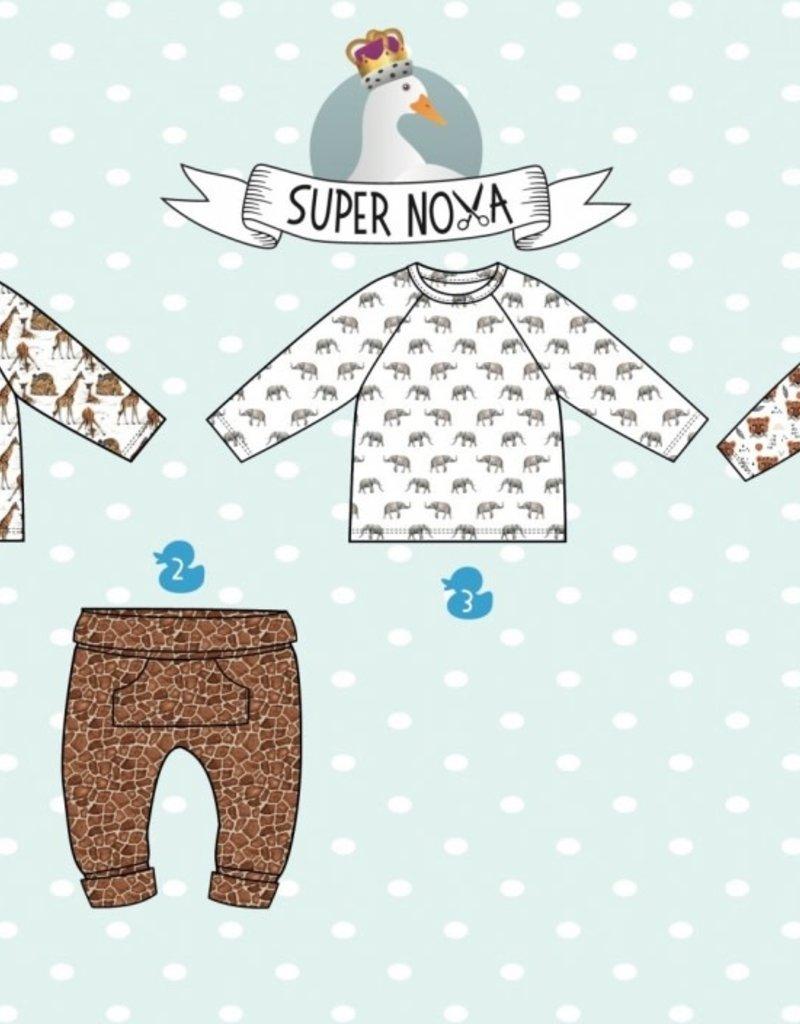 Super Nova Lucca