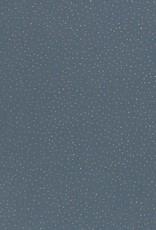 Tetra katoen blauw zilver dots