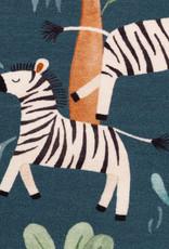 Savanna zebra