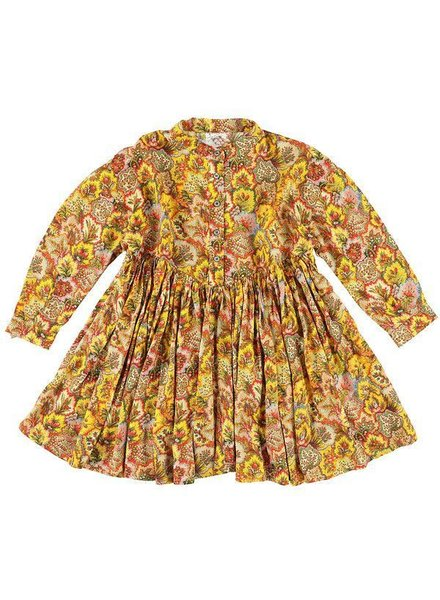 dress - Illy Paisley Honey