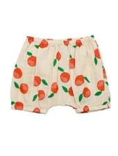 bloomer - Romy clementines