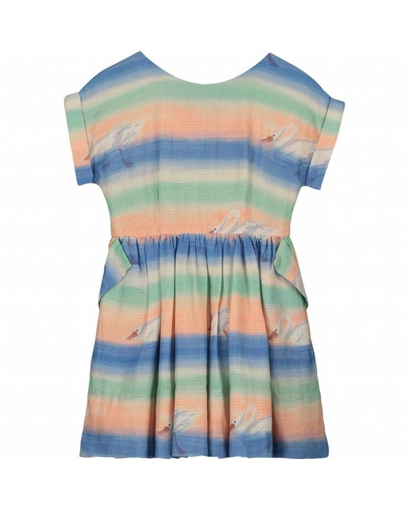 dress - Pixi Spring