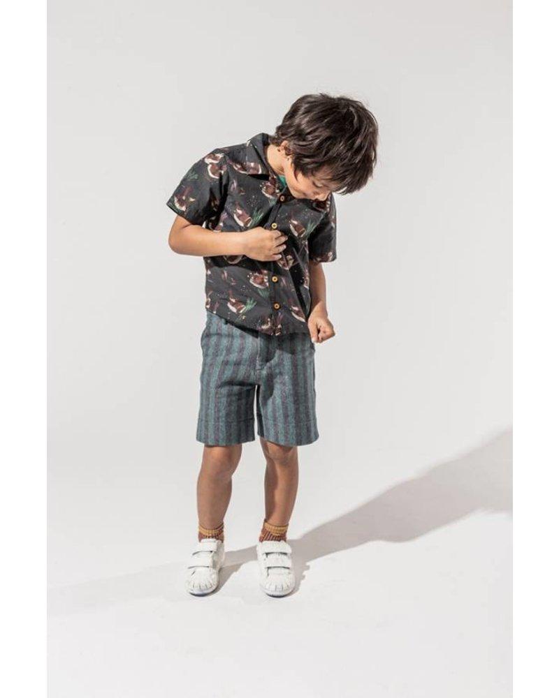 shirt - Enri Forest
