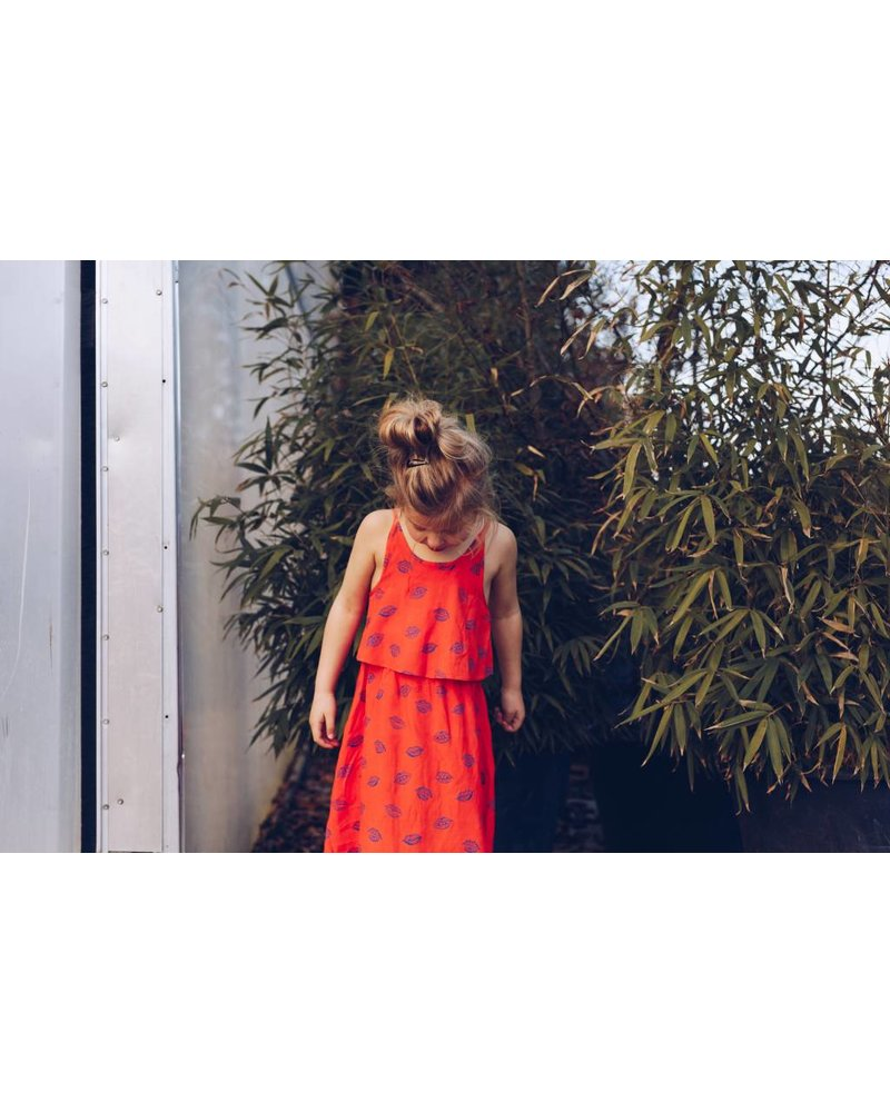 Dress - Marisol kiss flame