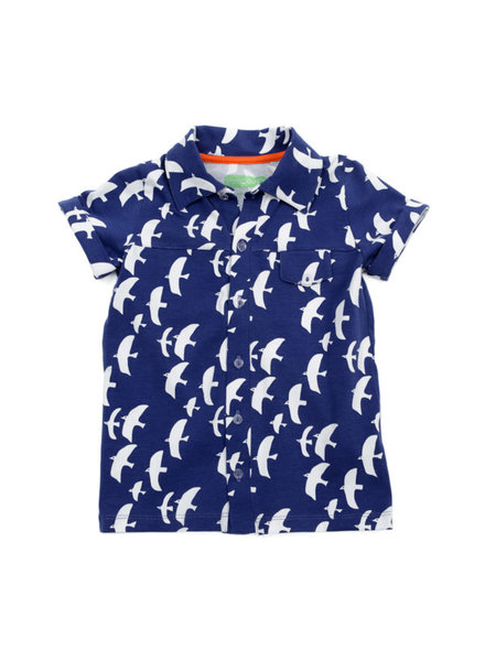 Shirt - Jeff seagulls