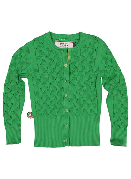 OUTLET // cardigan green I Shiver