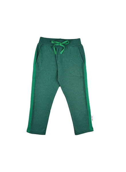 Stripe pant - Bicolor Green