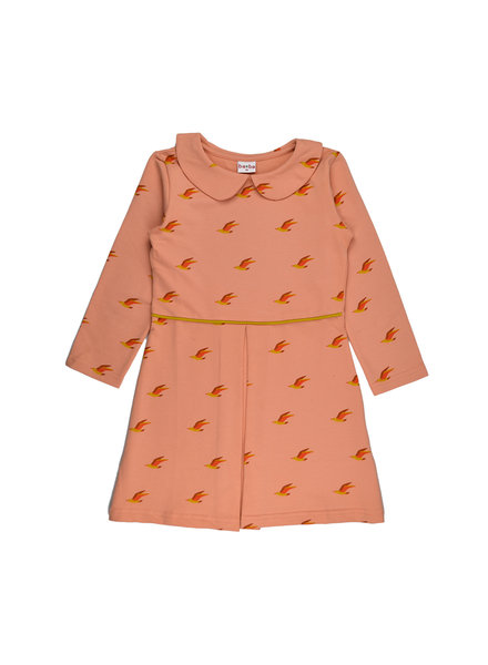 Collar dress - Birds