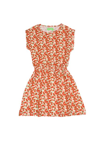 Dress - Yara Summer Berries