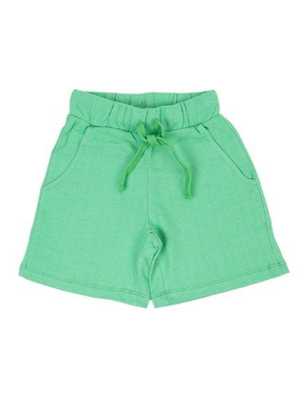 Shorts - Levi Poison Green