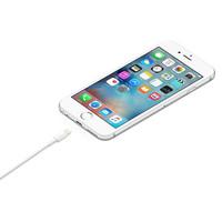 Lightning USB Kabel (1 m)