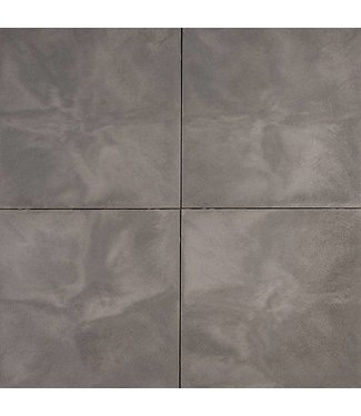 Axenta Plata Gris 60x60