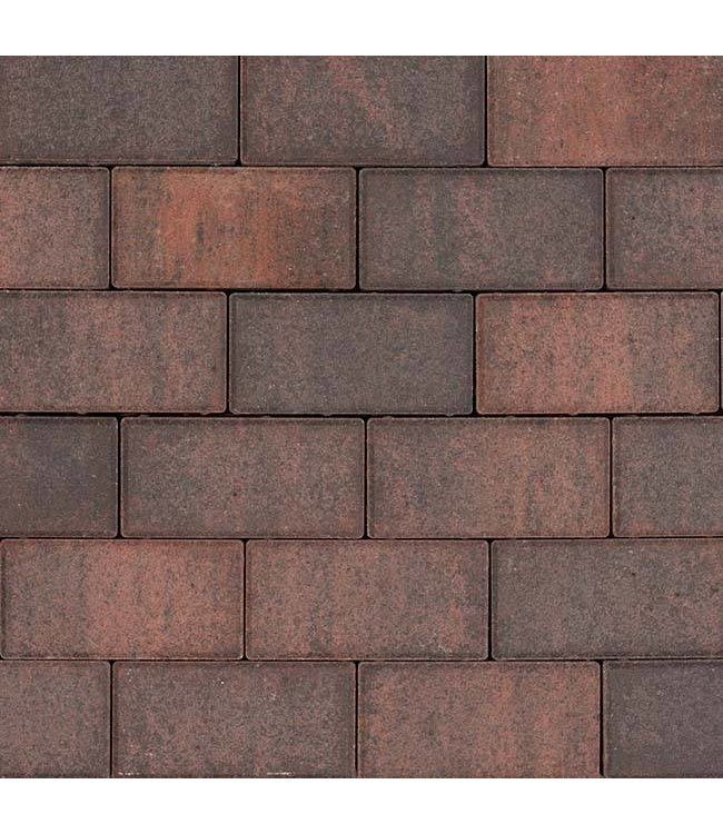 Tremico Bkk Rood-zwart 21x10,5x7 cm