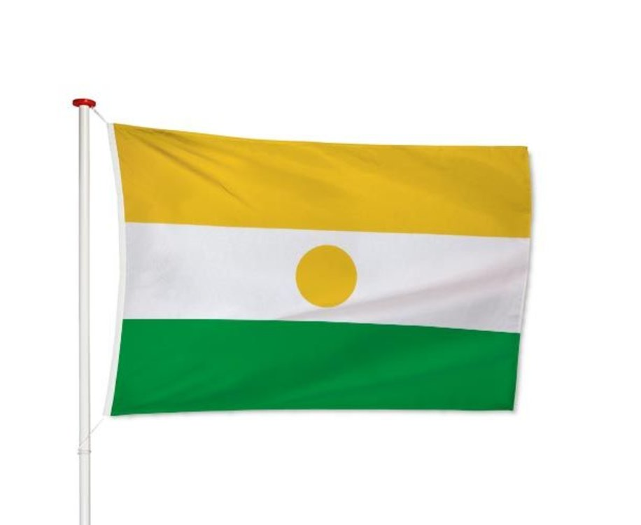 Nigerese Vlag