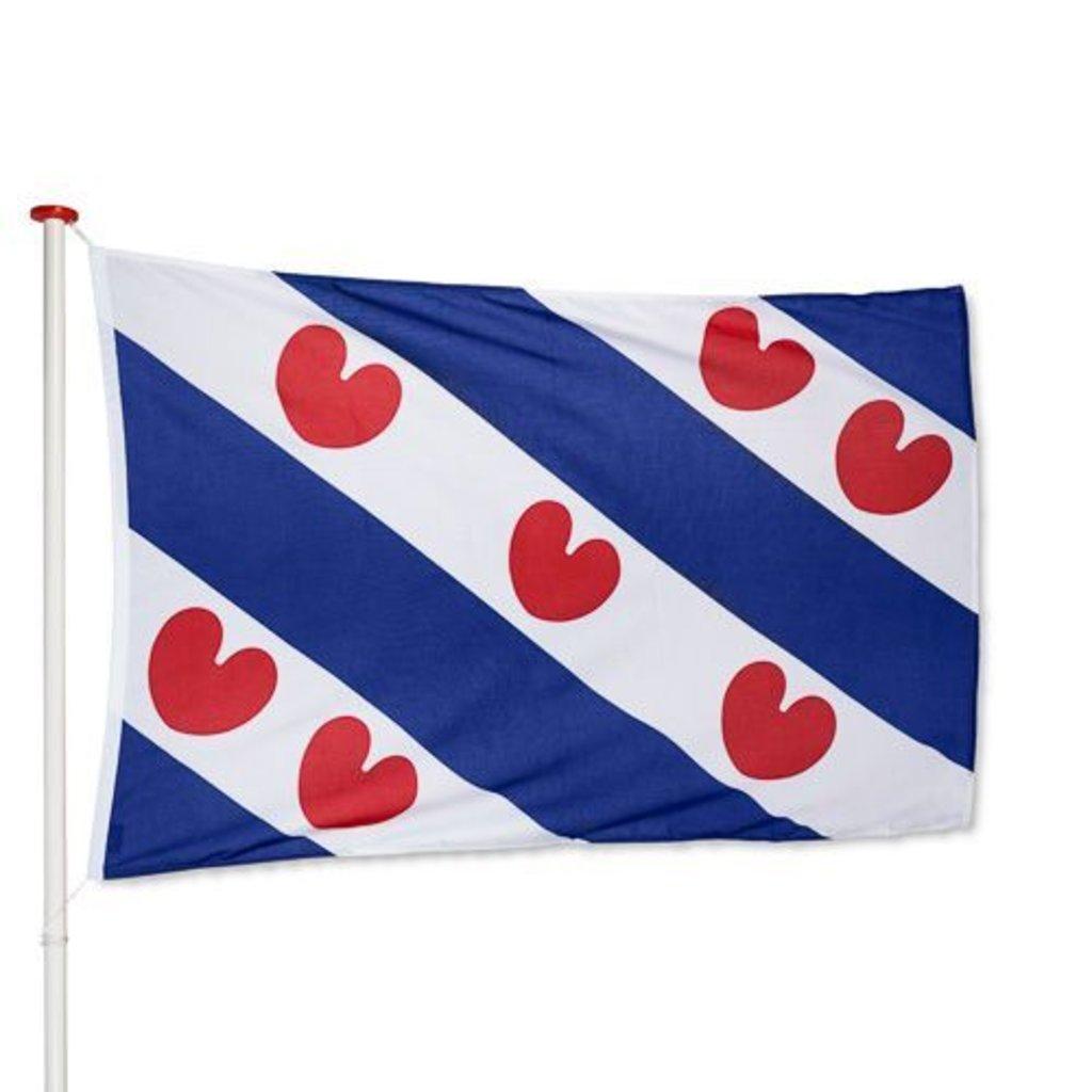 Vlag Friesland / Friese vlag