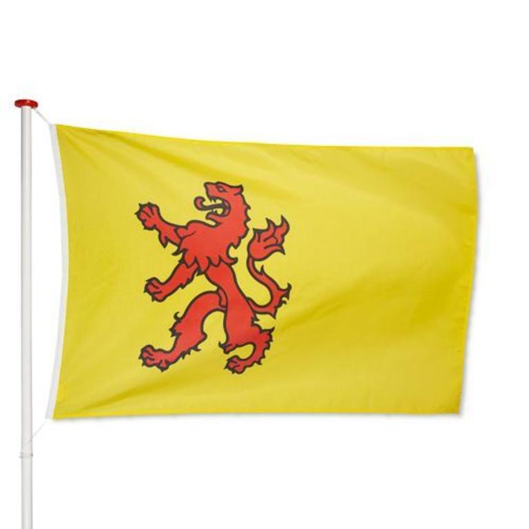 Zuid-Hollandse vlag