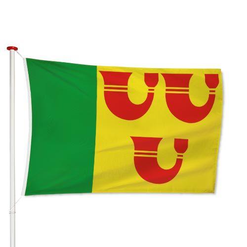 Vlag Heeze-Leende