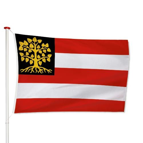 Vlag s-Hertogenbosch