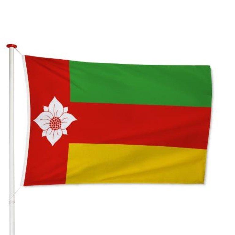 Vlag Tynaarlo