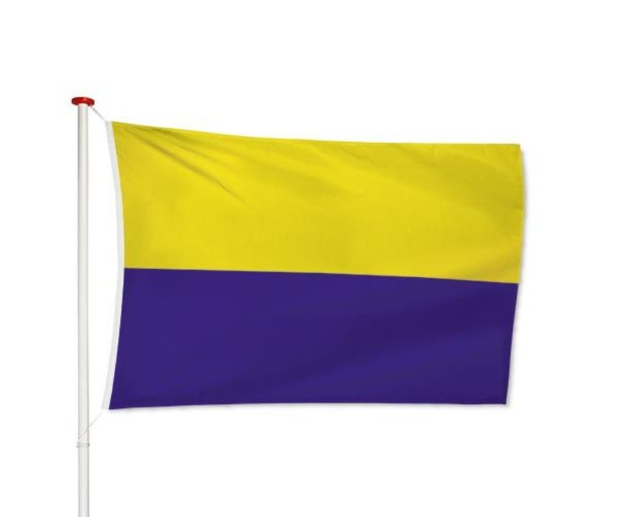 Vlag Zandvoort