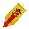 Wimpel Zuid-Holland 300cm