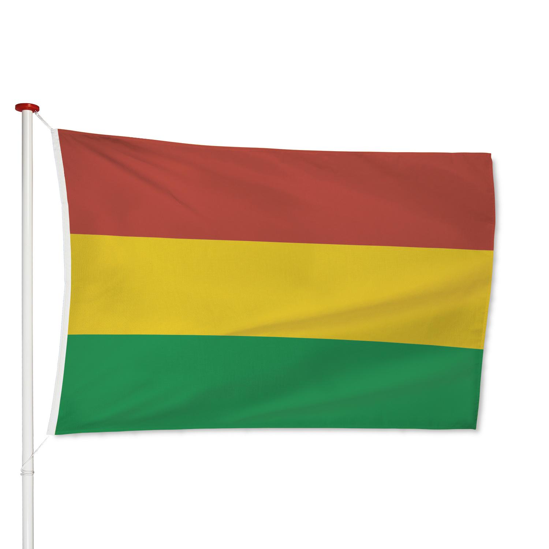 Vlag Carnaval