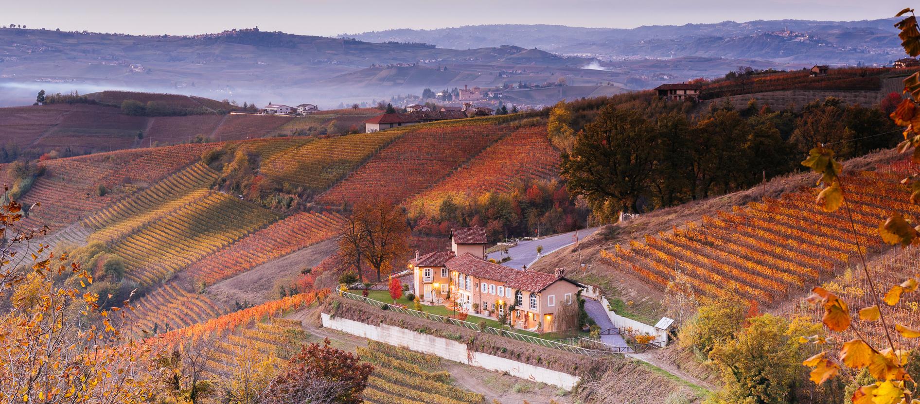 Het wijnhuis Rizieri
