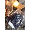 Zakje Tillandsia aubergine 30 gram