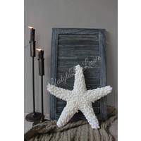 Schelpenster Starfish - maat M