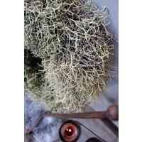 Krans Iron bush naturel 23 cm