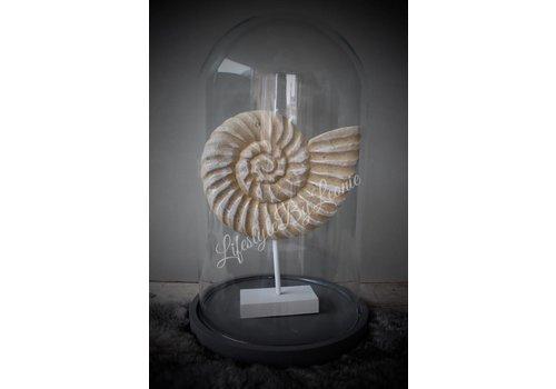 LifestyleByLeonie Ornament schelp Fossil 24 cm