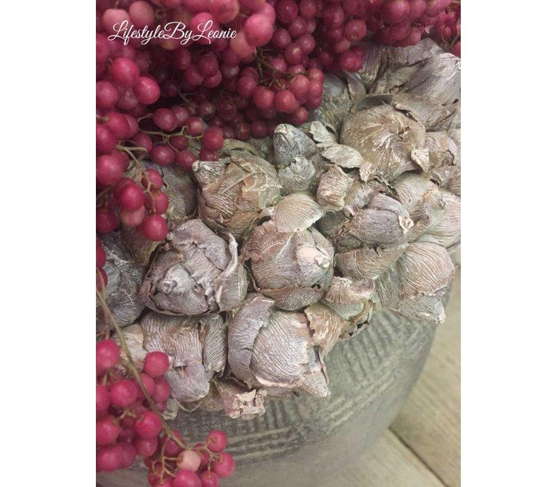 Krans Coco fruit Naturel 30 cm