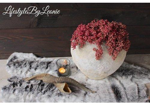 LifestyleByLeonie Gedraaide ramshoorn 25 - 30 cm