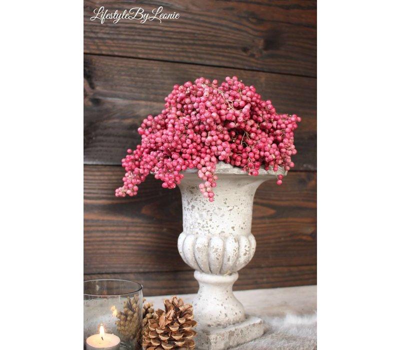 Bosje roze Pepperberries